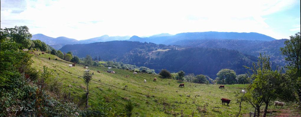 Vue sur le Mont Dore du chemin de Légal - Massif du Sancy - Auvergne - France