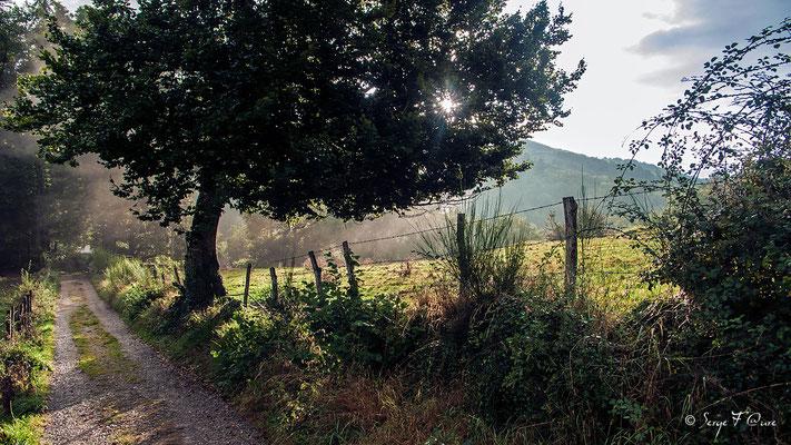 En repartant d'Espeyrac - France - Sur le chemin de St Jacques de Compostelle (santiago de compostela) - Le Chemin du Puy ou Via Podiensis (variante par Rocamadour)