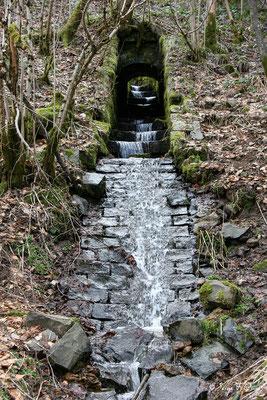 Petit ruisseau alimentant la Dordogne - Le  Mont Dore - Massif du Sancy - Auvergne - France