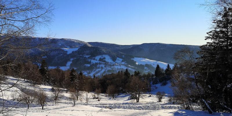 Vue du Pregnoux du chemin de la sapinière à Murat le Quaire - Massif du Sancy - Auvergne - France