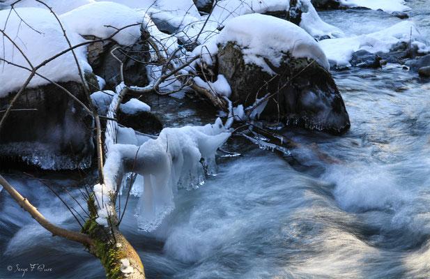 Ruisseau de l'enfer - le Mont Dore - Massif du Sancy - Auvergne - France