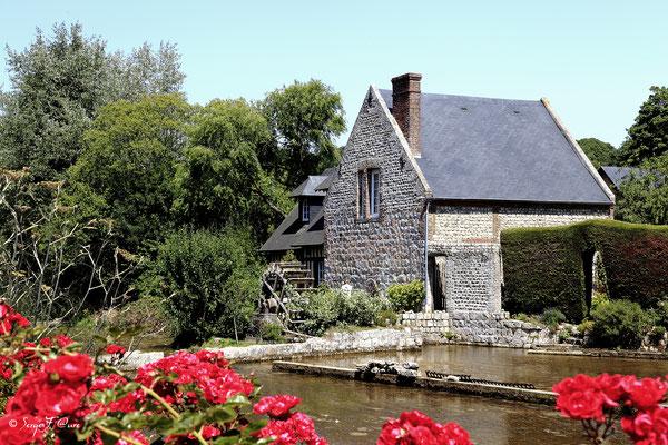 Moulin à eau et cressonnière à Veules les roses - Pays de Caux - Normandie - France