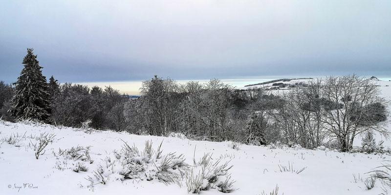 Massif du Sancy vu des Hauts Champs de Murat le Quaire (Le Puy de Sancy au centre altitude de 1886 m) - Auvergne - France
