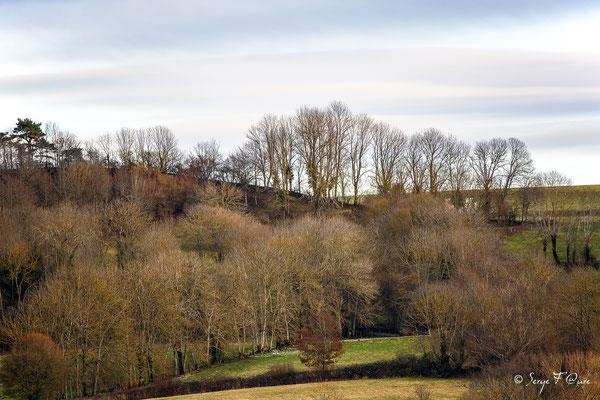 Paysage d'Auvergne autour du Puy de Dôme - France