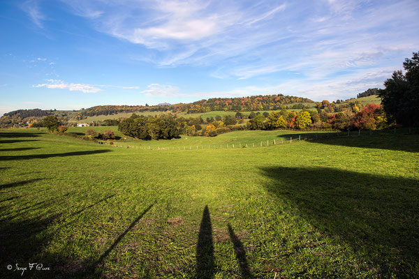 Au gré des champs dans le massif du Sancy - Auvergne - France