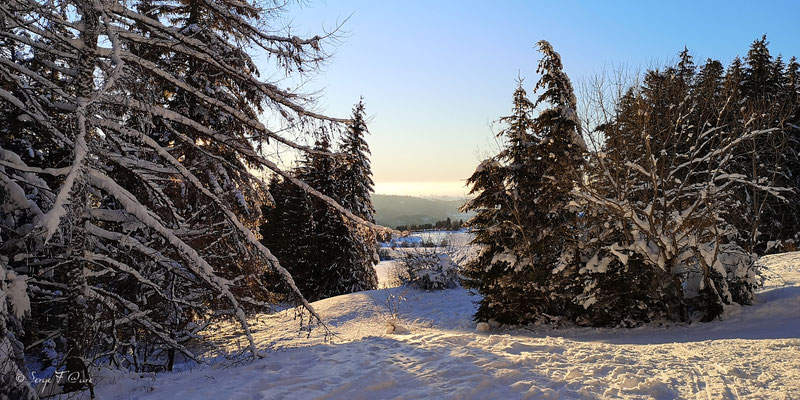 Paysage de neige sur le lac gelé de Murat le Quaire - Massif du Sancy - Auvergne - France