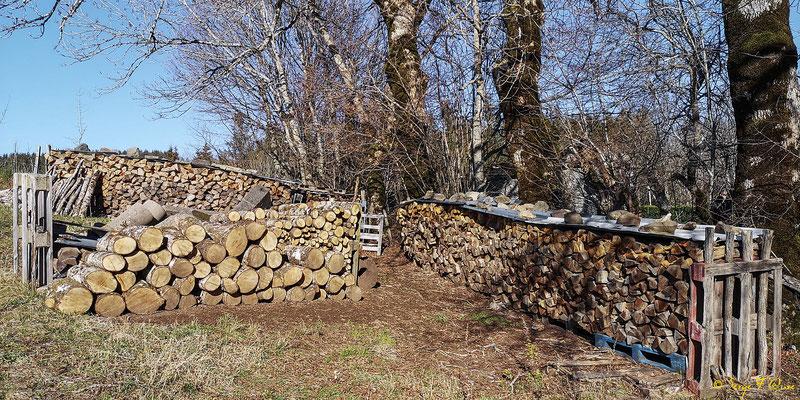 Tas de bois à Murat le Quaire - Massif du Sancy - Auvergne - France