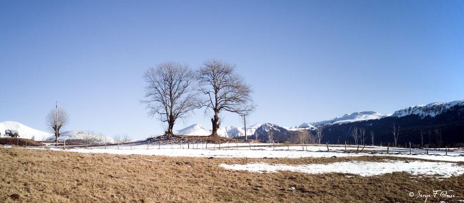 Le Massif du Sancy vu de l'Usclade - Petit hameau de Murat le Quaire - Auvergne - France