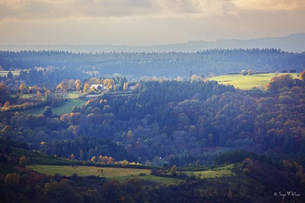 Paysage d'automne - Auvergne - France