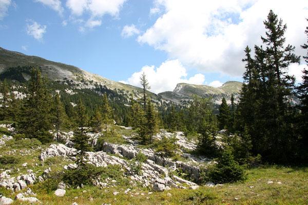 La traversée des Hauts Plateaux du Vercors-Août 2007