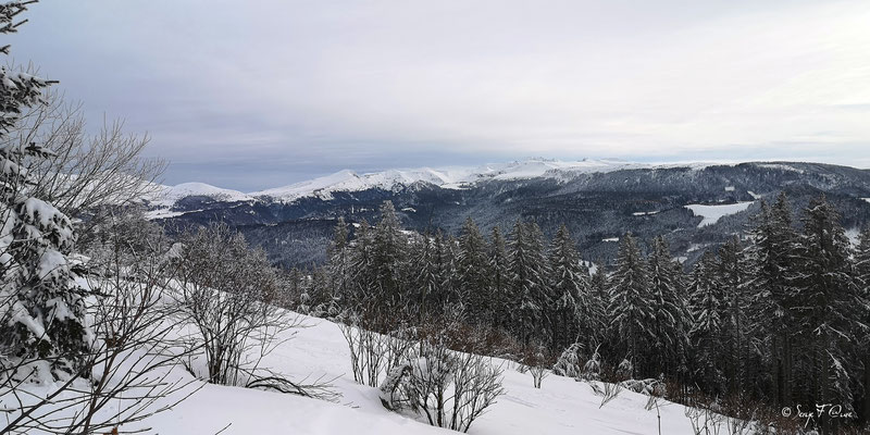 Vue sur le Sancy sous la neige - Murat le Quaire - Massif du Sancy - Auvergne - France