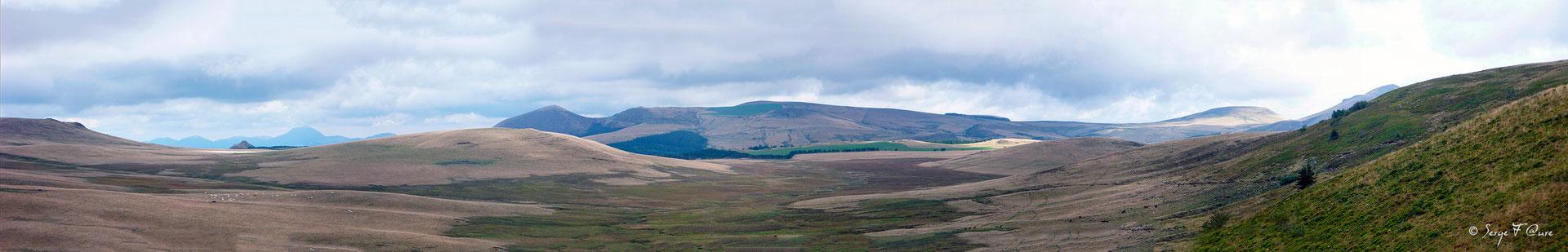 Estives du plateau du Guéry vu du Puy Gros - Massif du Sancy - Auvergne - France