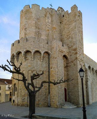 L'église de Notre-Dame-de-la-Mer est une église fortifiée romane du IXᵉ siècle des Saintes-Maries-de-la-Mer en Camargue dans les Bouches-du-Rhône, en Provence. Dédiée à Notre-Dame et aux Saintes Maries, elle fait l'objet du pèlerinage aux Saintes-Maries-d
