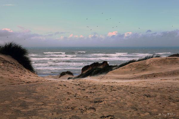 La Manche vue des dunes à Saint Quentin en Tourmont - Picardie - France (Octobre 2013)