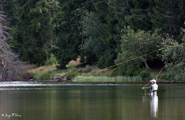 Pêche à la mouche au lac du Guéry - Massif du Sancy - Auvergne - France