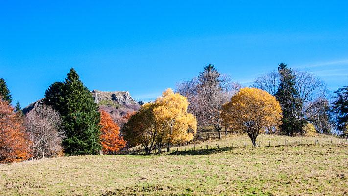 Le Puy Gros vue de l'Usclade -  Murat le Quaire - Auvergne - France
