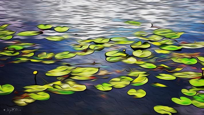 Photo façon tableau peinture Serge Faure
