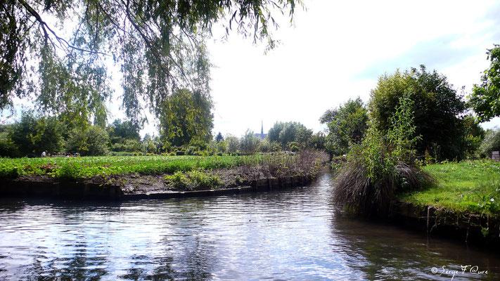 Les Hortillonnages - Amiens - Picardie - France (Juin 2008)