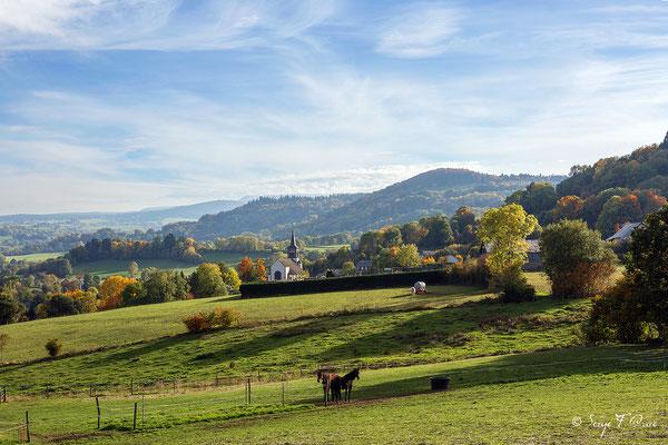 Au gré des champs à Saint-Bonnet-prés-Orcival dans le massif du Sancy - Auvergne - France