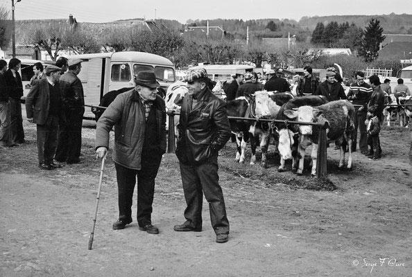 Foire de Giat (les bestiaux) - Auvergne - France (1978)