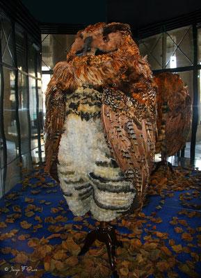 """Costume de Papageno dans l'opéra de Mozart """"la Flûte enchantée"""" en 2006 - exposé au Palais Royal - Paris - France"""