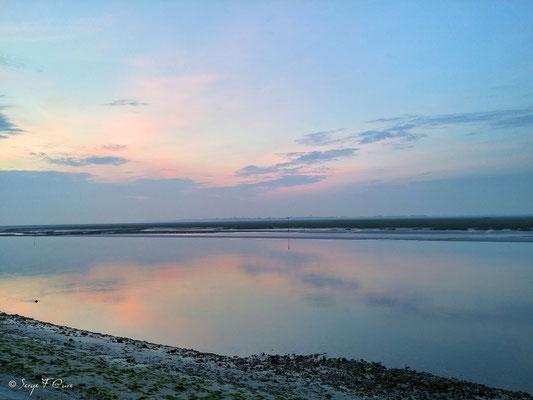 Le Crotoy vu de Saint Valéry sur Somme - Baie de Somme - Picardie - France (juin 2016)