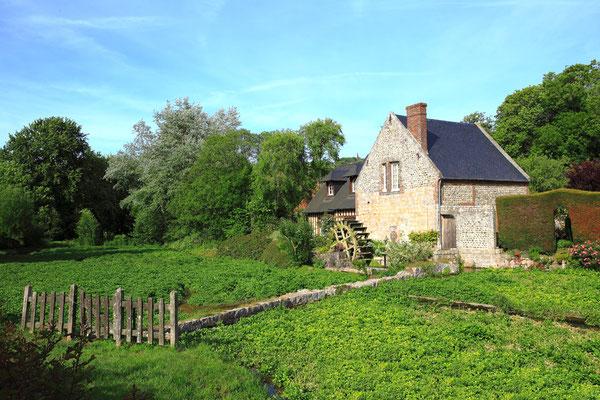 Moulin et cressonnière à Veules les roses - Pays de Caux - Normandie - France