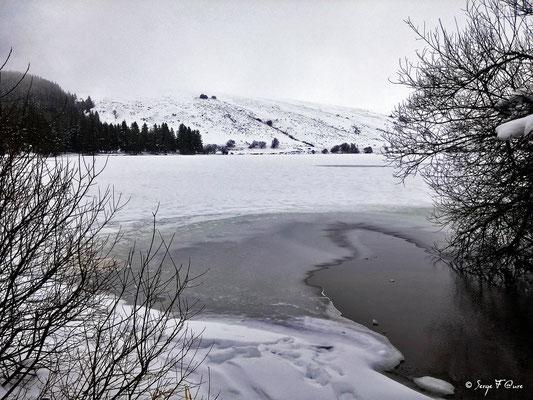 Le lac gelé du Guéry - Massif du Sancy - Auvergne - France