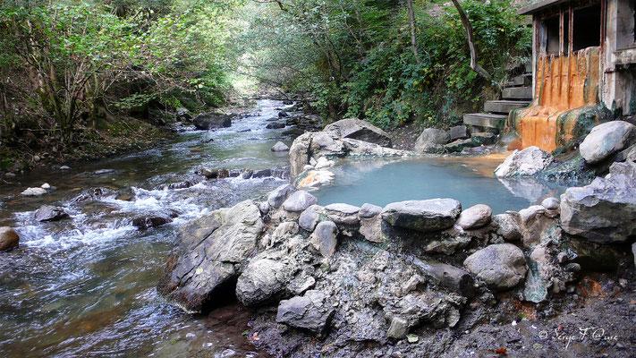 Source chaude Croizat du Mont Dore - Massif du Sancy - Auvergne - France