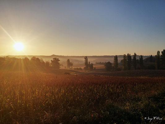 Après le hameau de Bonal entre Montcuq et Lauzerte - Sur le chemin de St Jacques de Compostelle (santiago de compostela) - Le Chemin du Puy ou Via Podiensis (variante par Rocamadour) - Septembre 2014