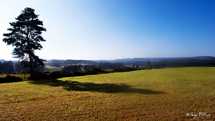 En allant vers La-Chaze-de-Peyre - France - Sur le chemin de St Jacques de Compostelle (santiago de compostela) - Le Chemin du Puy ou Via Podiensis (variante par Rocamadour)
