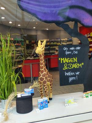 Apothekendekoration mit Giraffen