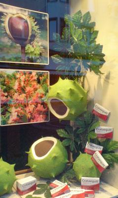 herbstliche Apotheken - Dekoration mit Kastanien