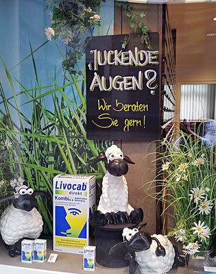 Schaufenster Allergie