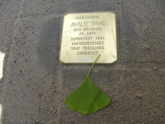 Marie-Alexandra-Straße 46, Amalie David