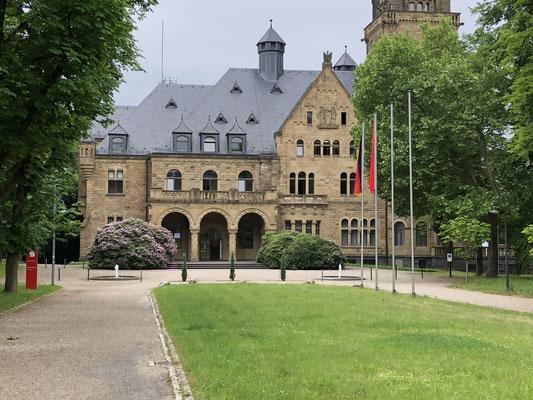 Schloss Waldhausen - Park