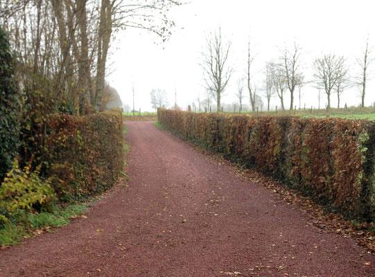 Chemin d'accès enduit bicouche - graviers Muneville - TTA