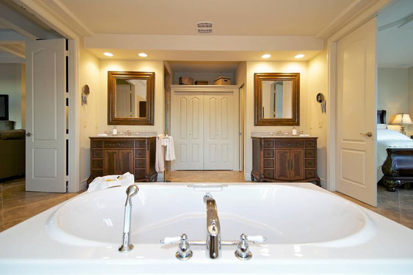 250 sq ft luxury en suite bathroom.