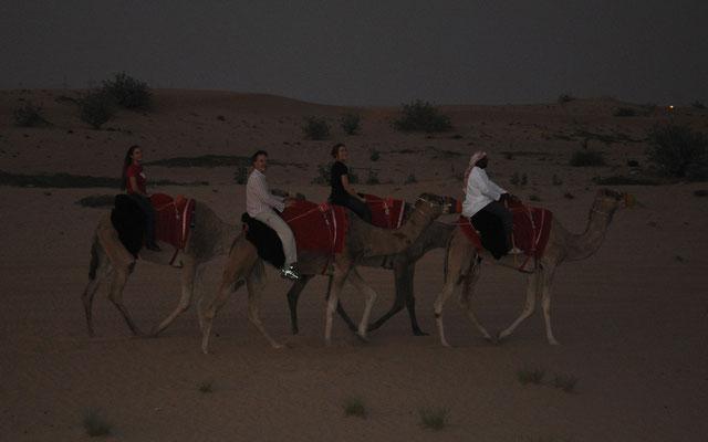 Wüstentrip auf dem Kamelrücken