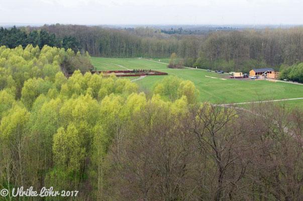 Blick von der Aussichtsplattform des Museums auf den Park Kalkriese