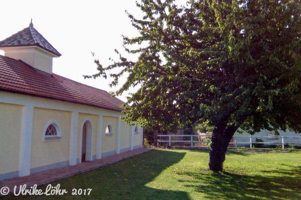 Pension am Donaubogen - Garten