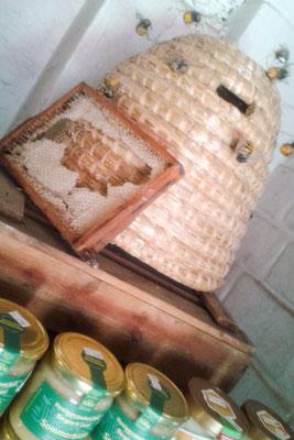 Honig vom Halfeshof