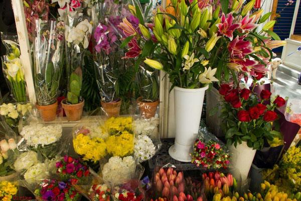 Blumen auf dem Mercato del Testaccio