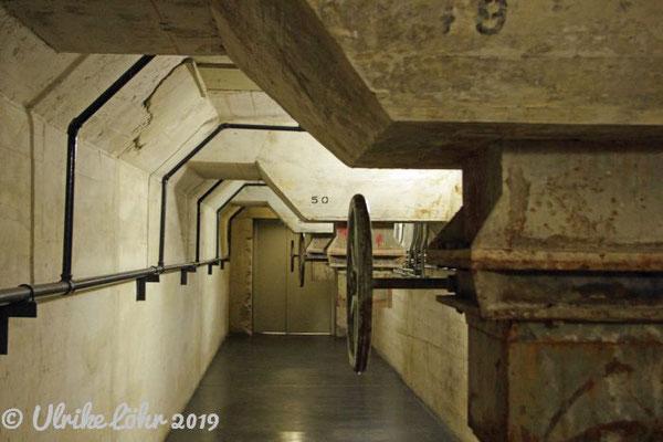 Zeitz MOCAA Museum in Kapstadt