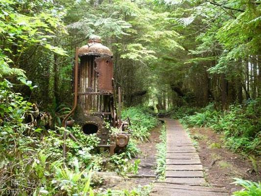 """""""Donkey Engine"""", eine Dampfmaschine, mit der früher Bäume aus den Wald geholt wurden"""