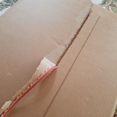Pappkarton mit Aufreißverschluss