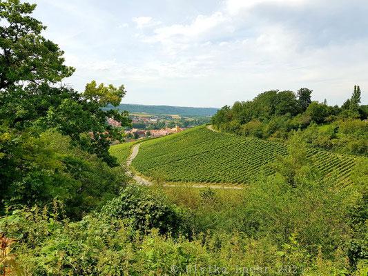 Der Ausblick vom Kirschberghof