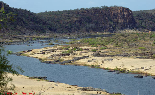 Blick vom Olifants Lookout