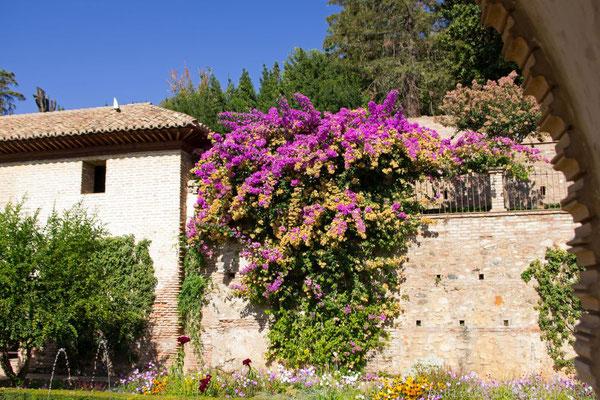 Generalife der Alhambra