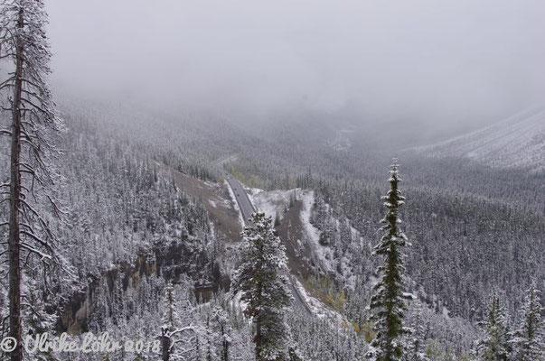 Blick auf den Icefields Parkway